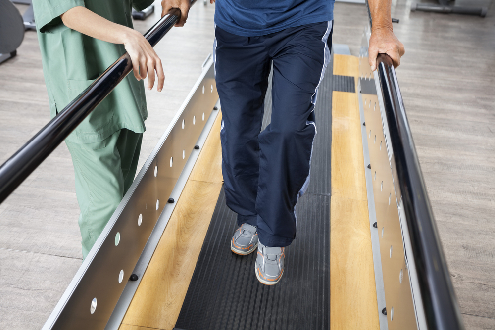 What are the six determinants of gait?